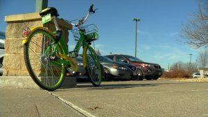 Lime rental bicycles