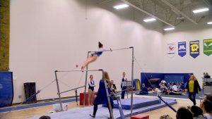 Wayzata Gymnastics