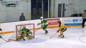 Wayzata boys hockey