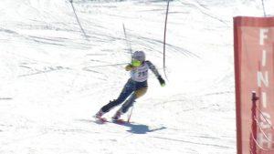 Alpine skiers state