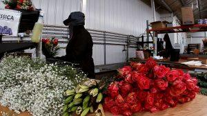 Len Busch Plymouth Valentines