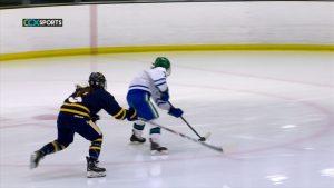 Wayzata girls hockey