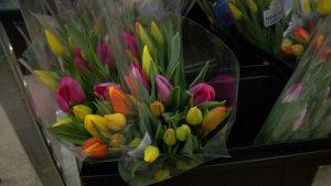 len busch roses tulips