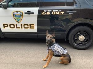 New Hope K9 Protective Vest