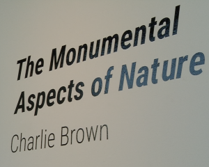 Monumental Aspects of Nature