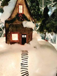 robbinsdale snow domes