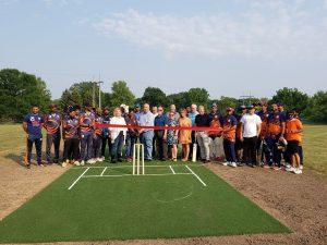 Cricket Pitch Maple Grove